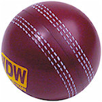 Cricket Ball Stress Balls